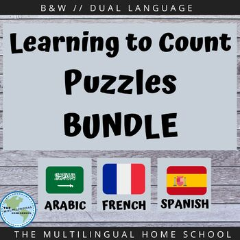 Number Counting Puzzles BUNDLE#3