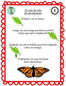 Bilingual Poem of the Week: El ciclo de vida de una mariposa