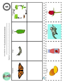 Bilingual Poem of the Week: El ciclo de vida de una mariposa Bundle