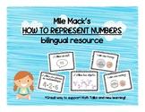 Bilingual Representing Numbers Posters