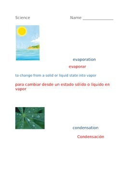 Bilingual Science Worksheet