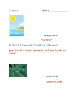 Bilingual Science Worksheet