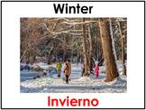 Bilingual Seasons Posters