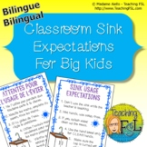 Bilingual Sink Expectations Posters - Attentes pour l'usag
