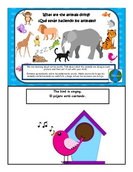 Bilingual Spanish English What are the animals doing?