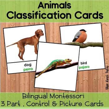 Bilingual Viviparous And Oviparous Animals Classification 3 Part Cards