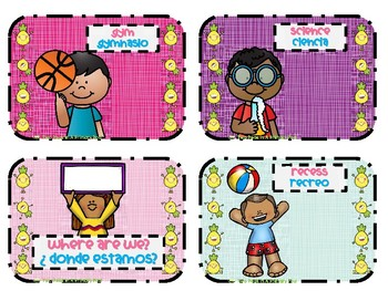 Bilingual - Where are We? card set with Pineapple theme