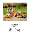 Bilingual Animals (Chinese Zodiac) English and Simplified Chinese PDF