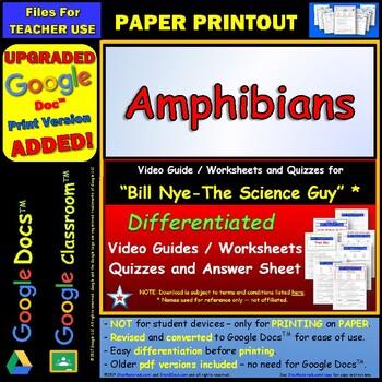 Amphibians Test Worksheets Teaching Resources TpT