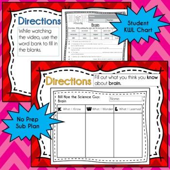 Bill Nye BRAIN Video Guide, Quiz, Sub Plan, Worksheets, No Prep Lesson