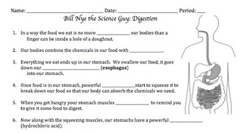 Bill Nye Digestion Video Worksheet by Mayberry in Montana | TpT