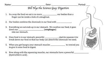 Bill Nye Digestion Video Worksheet