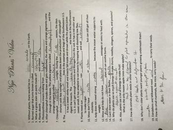 "Bill Nye ""Plants"" Video Worksheet (Key)"