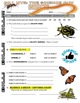 Bill Nye the Science Guy : INSECTS (animal video worksheet)