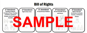 Bill of Rights Reference Sheet
