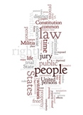 Bill of Rights - Word Art Poster Prints