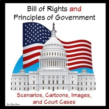 Bill of Rights and Principles of Government Activity Bundle