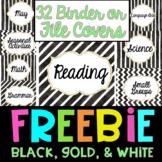 Binder or File Covers Freebie