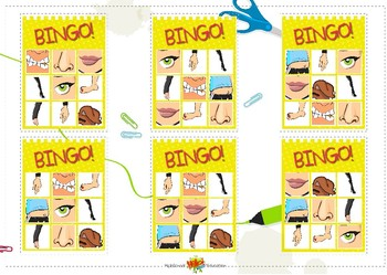 Bingo Body all Sets