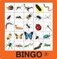 Bingo Bundle 2