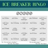 Bingo Icebreaker for beginners EFL / ESL students