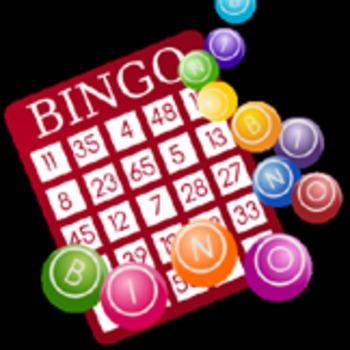 Bingo Master