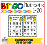 Bingo Numbers 0-20