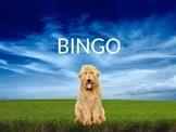 Bingo Song Book