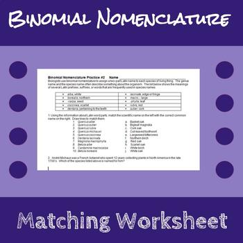 Binomial Nomenclature Worksheet by Erin Frankson | TpT