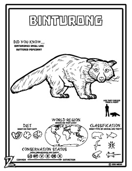 Attrayant Binturong 10 Resources Coloring Pages, Reading U0026 Activities