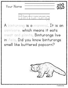 Binturong -- 10 Resources -- Coloring Pages, Reading & Activities