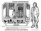 Bio Sphere - Alexander Hamilton Resources - Differentiated Leveled Reading & Fun