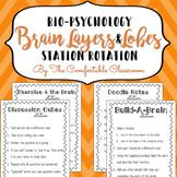 Bio-psychology: Layers & Lobes of the Brain