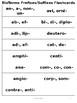 BioTerms Prefixes/Suffixes Practice Week 2