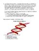 Biochemistry Chemistry of Life Quiz 2