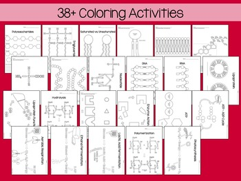 Biochemistry Coloring and Science Literacy Unit