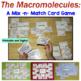 Biochemistry and Organic Compounds Bundle