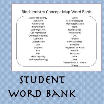 Biochemistry Concept Map: Macromolecules, Enzymes & Properties of Water