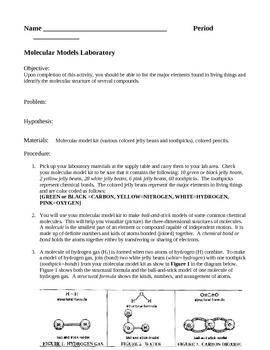 Biochemistry Molecular Models Laboratory Lesson Plan