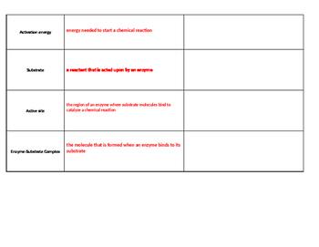 Biochemistry: Part 2 - Chemistry of Life - Vocabulary Chart