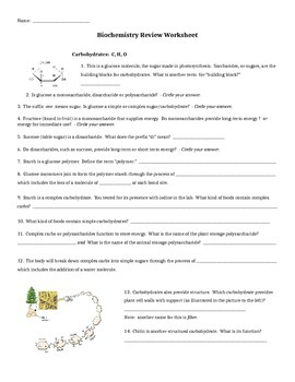 biochemistry review worksheet by dee teachers pay teachers. Black Bedroom Furniture Sets. Home Design Ideas
