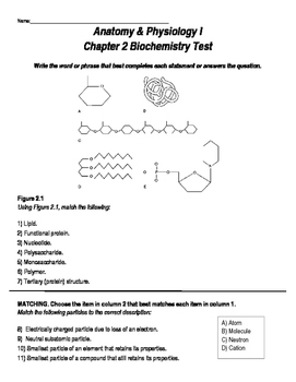 Biochemistry Test - Anatomy & Physiology Focus