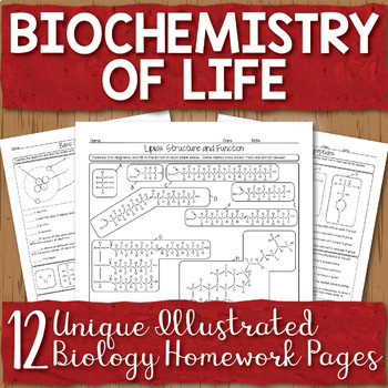 Biochemistry Unit Homework Pages