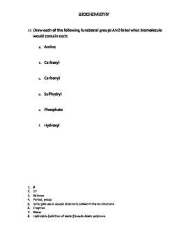 Biochemistry Worksheet-key included