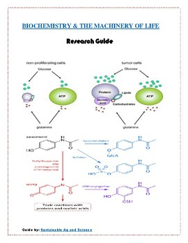 Biochemistry for Kids- Research Guide