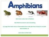 Biodiversity - Classifying Animals