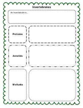 Biodiversity - Classifying Animals Graphic Organizer - Invertebrates
