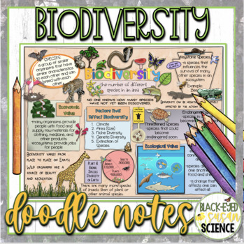 Biodiversity Squiggle Sheets & Understanding Checkpoint (quiz)