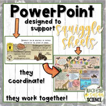 Biodiversity Doodle Notes Power Point