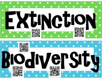 Biodiversity INTERACTIVE Word Wall